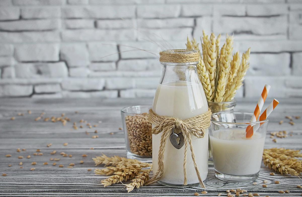 Plant-Based Yogurt Market