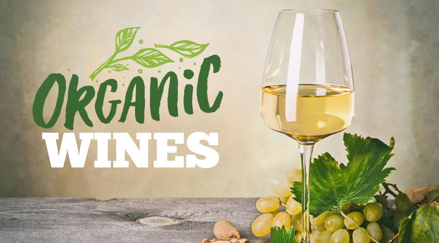 Organic Wine Market