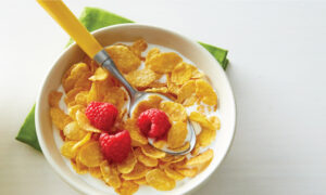 Edible Flakes Market