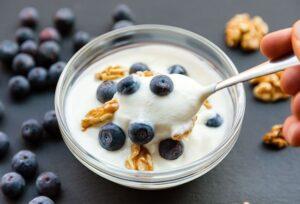 High Protein Yogurt