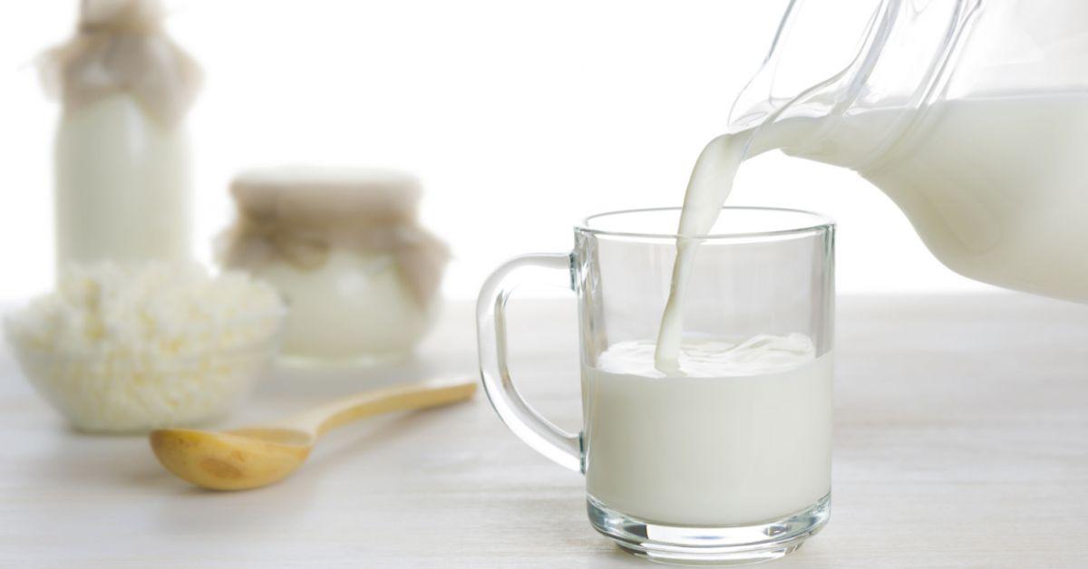 Organic Milk Powder Market