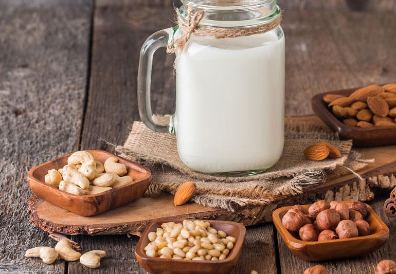 Plant Milk Market