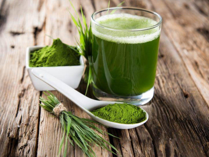 Algae Protein